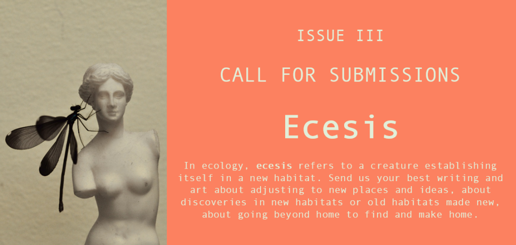 Ecesis call for submissions - The Hopper Anna Martin